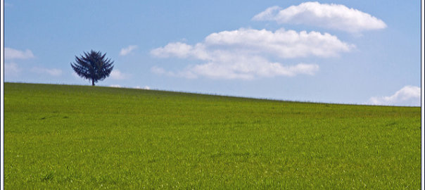 Sieben Gründe, warum Sie in Land investieren sollten (Foto: Bert Kaufmann)